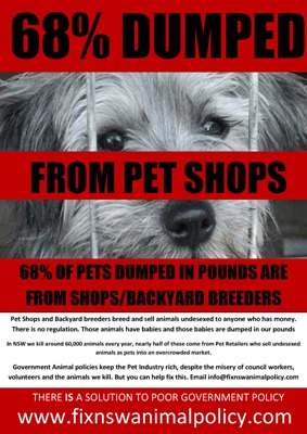 68 percent pet shop
