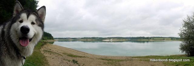 Munson at lake, beach in distance