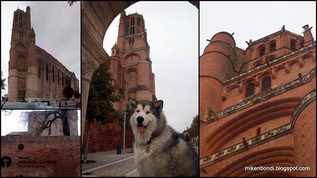 2010-10-30 Wolf park - Albi1-2