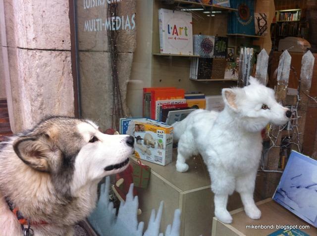 Munson meets robohound