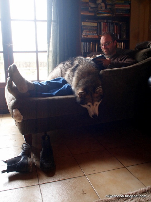 Brent with malamute lap stole