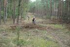 Basiek wjechala w jakies drzewa, bo ich nie zauwazyla :-)