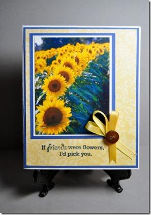 sunny friend (421x640)