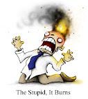 the stupid! it burns!