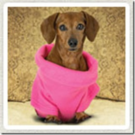 S-snuggie-for-dogs