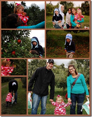 Apple Picking1