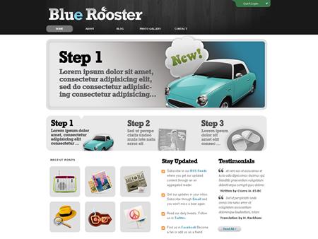 BlueRoosterDemo_450x338.jpg