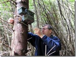 Andrea Madinelli, tecnico dell'università di Udine, posiziona la trappola fotografica