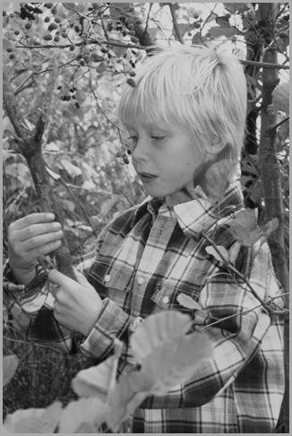 Morten julekort 2008