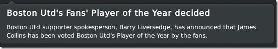 Boston Fans' Player of the Year