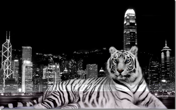 City_Tiger_1680 x 1050 widescreen