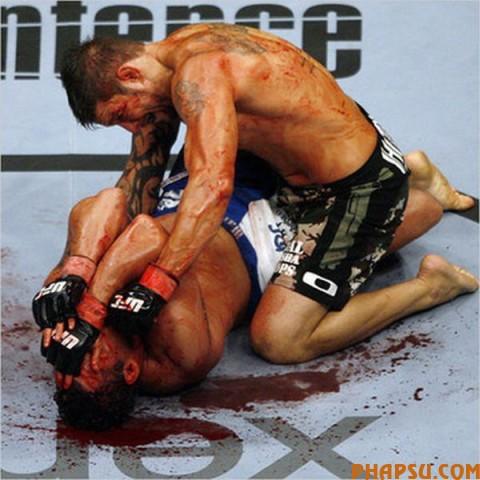 fights_03.jpg