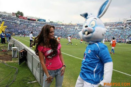 An Ecuadorian fan cheers her team prior to a World Cup 2010 qualifying soccer game between Ecuador and Venezuela in Quito, Saturday, Oct. 13, 2007. (AP Photo/Fernando Llano)