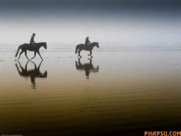 striking_reflective_photography_640_30.jpg