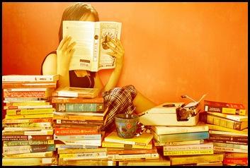 baca novel