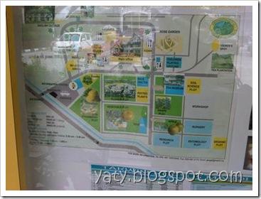 IMG03523-20110410-1043