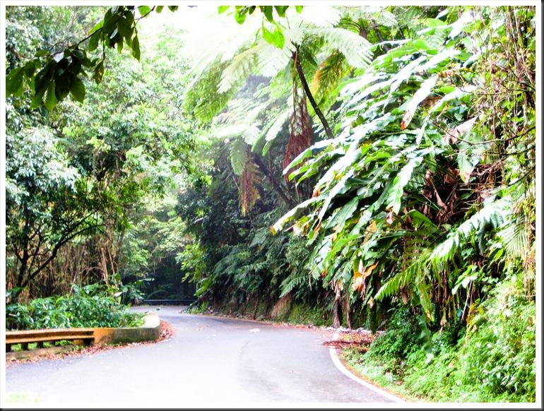 Puerto Rico 2010 217