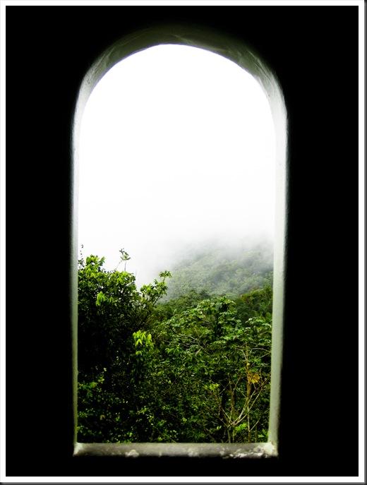 Puerto Rico 2010 228