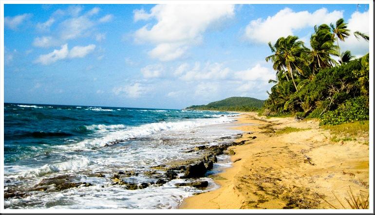 Puerto Rico 2010 138