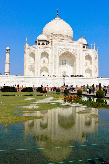 India 135
