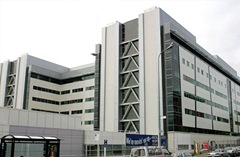 auckland-hospital