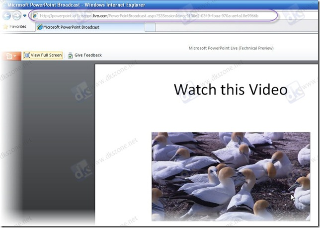 powerpoint slideshow in IE8