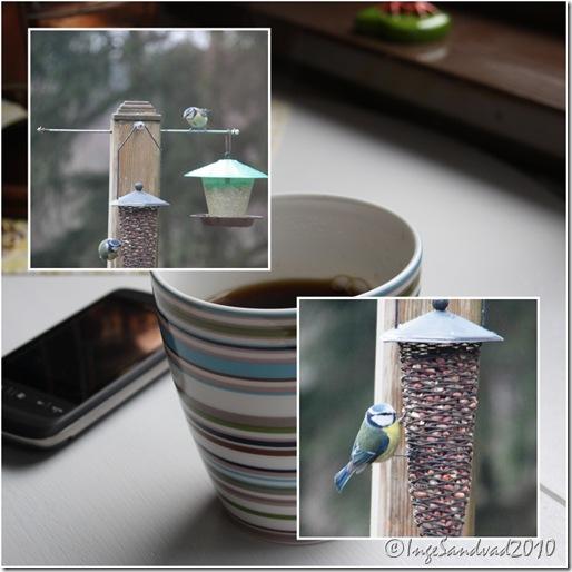 morgenmadkaffe
