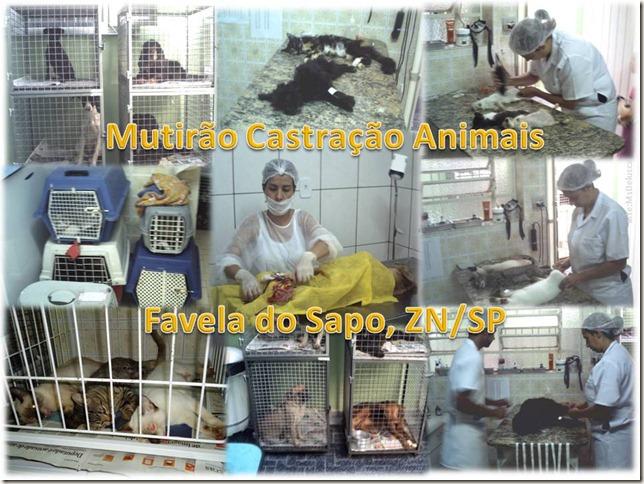 Marcelinho_ (6)