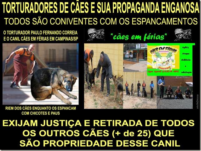 caes_torturados01