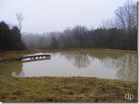 Full pond