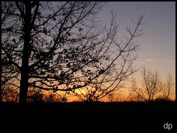 1-1-09 dawn