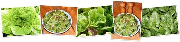 View Salad