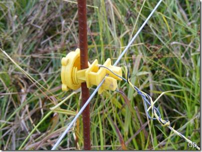 wire hook