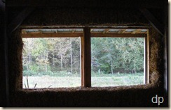 one of the living room windows