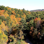 Beautiful Fall colors in Canton valley Connecticut