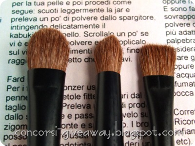 Giveaway-Minerale-Puro-make-up-Set-Pennelli-Particolare-2