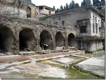 427 Herculaneum