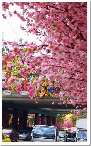 rosa kinesiska nyåret