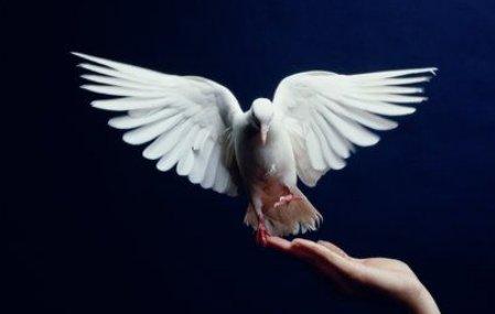 Svētīgais miers