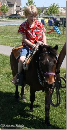j pony
