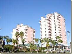 Florida2010 022