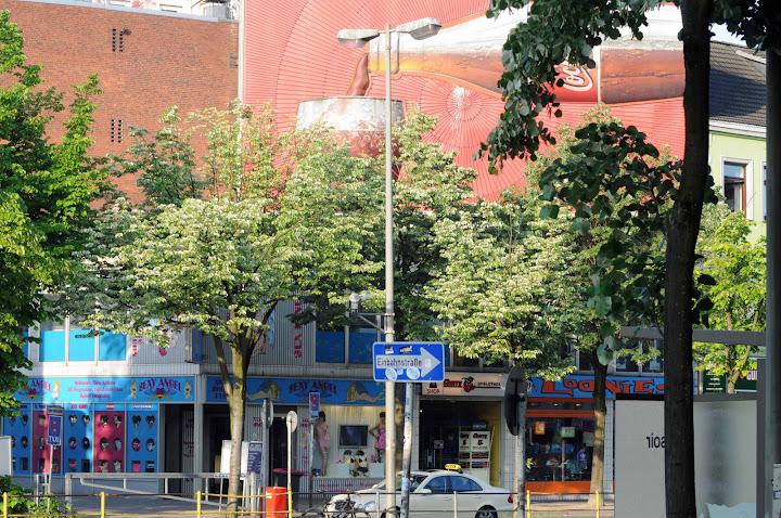 Familien stammbaum mutzenbecher hamburg oldenburg berlin