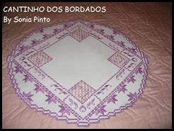Trabalho Sonia Pinto 1