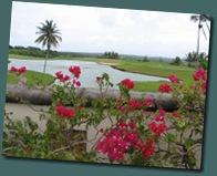 Guam 2 & 3 031