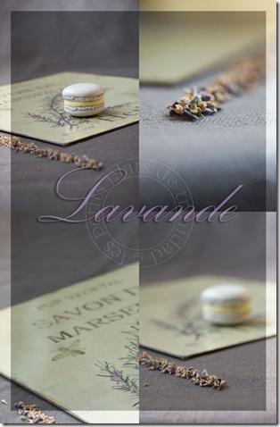 lavandemosaique copie