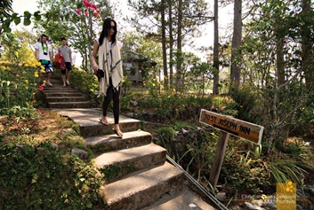 Flowered Pathway at Sagada's St. Joseph Resthouse