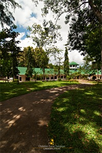 At the Trappist Monastery Grounds