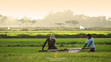 Farmers at the Candaba Wetlands