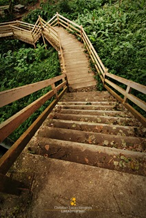 Steps on the Eco Trail in Picnic Grove, Tagaytay