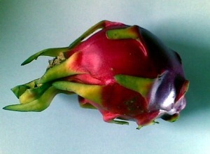 chinese dragon fruit